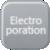 Electroporatie